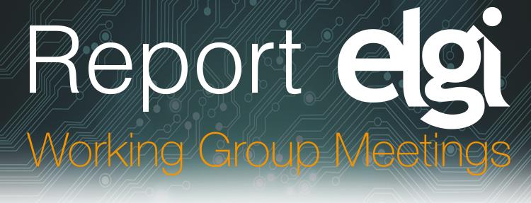 Virtual WGM Report